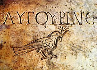 Imagen que contiene pasto, viejo, pájaro, parado Descripción generada automáticamente